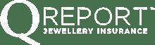 Q Report Logo